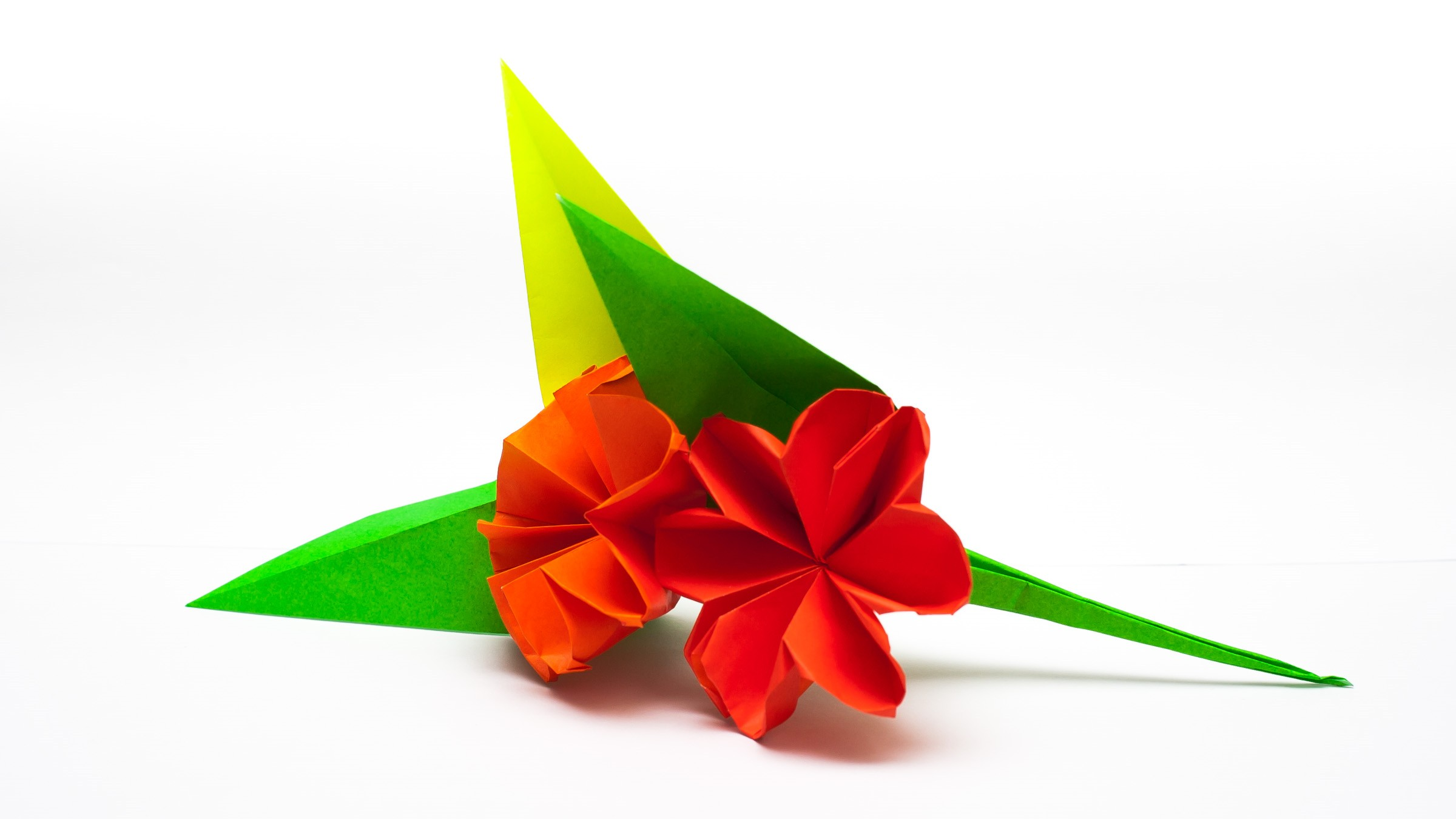 Origami Flower Diagram